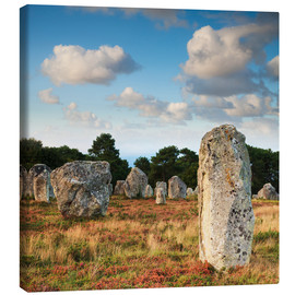 Stampa su tela  Megaliths in Carnac