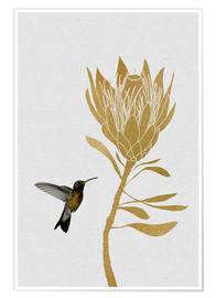 Orara Studio - Hummingbird & Flower I