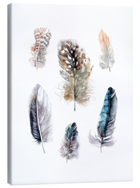 Stampa su tela  Feathers collection - Verbrugge Watercolor