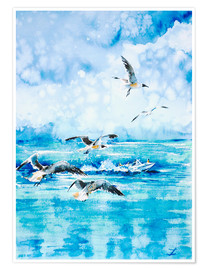 Poster Premium  Black headed Seagulls At Seven Seas Beach - Zaira Dzhaubaeva