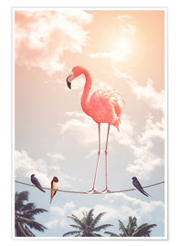 Poster Premium  FLAMINGO & FRIENDS - Jonas Loose