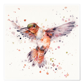 Poster Premium  Rufous The Hummingbird - Sillier Than Sally