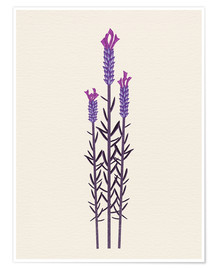 Poster Premium butterfly lavender