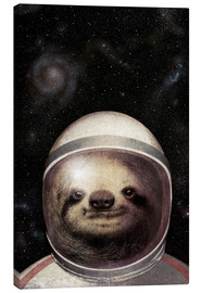 Tela  Space Sloth Poster Lounge - Eric Fan