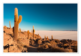 Poster Premium  Isla Incahuasi and Uyuni Salt Flat at sunrise, travel destination in Bolivia. - Fabio Lamanna