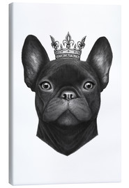 Tela  Queen French bulldog - Valeriya Korenkova