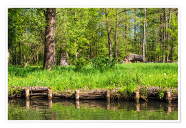 Poster Premium Landscape in the Spreewald area, Germany