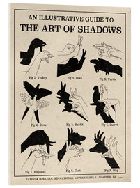 Stampa su vetro acrilico  The Art of Shadows - Mary Urban