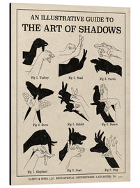 Stampa su alluminio  The Art of Shadows - Mary Urban