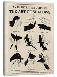 Stampa su tela  The Art of Shadows - Mary Urban