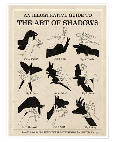 Poster Premium The Art of Shadow Riproduci X