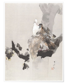 Poster Premium  Pigeons in a Tree - Watanabe Seitei