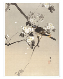Poster Watanabe Seitei   Bird on a Flowering Branch