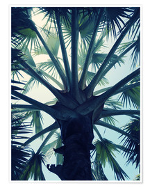 Poster  Tropical Tranquillity - Angelo Cerantola