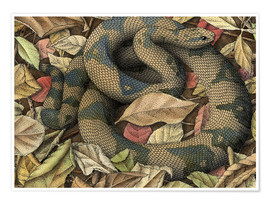 Poster Premium  Snake in autumn leaves