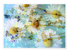 Poster Premium Montage of morning flowers