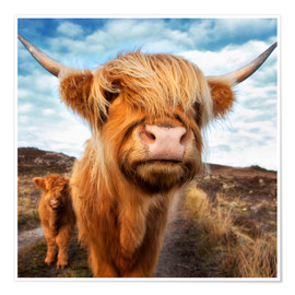 Poster Premium  Highland cattle with calf - Westend61