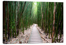 Stampa su tela  Trail through the bamboo forest - Pacific Stock