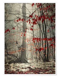 Poster Premium Winter forest with last leaves