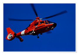 Poster Premium  Coast Guard helicopter