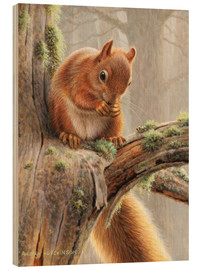 Stampa su legno  Red squirrel sitting on tree in forest