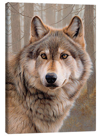Tela  North-american wolf portrait - Ikon Images