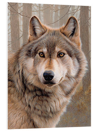 Forex  North-american wolf portrait - Ikon Images