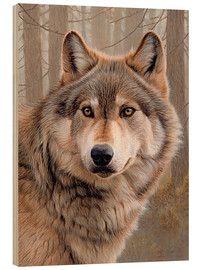 Legno  North-american wolf portrait - Ikon Images