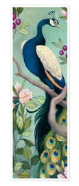 Poster Premium  Pretty Peacock I - Julia Purinton