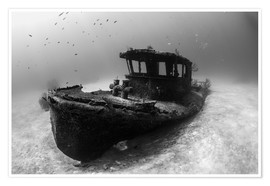 Poster Premium A tugboat wreck in the Bahamas.