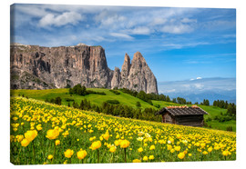 Stampa su tela  Spring on the Alpe di Siusi in South Tyrol - Achim Thomae