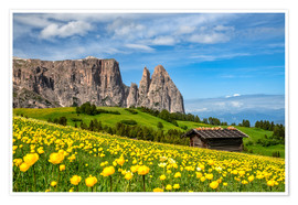 Poster Premium  Spring on the Alpe di Siusi in South Tyrol - Achim Thomae
