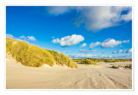 Poster Premium Landscape with dunes on the island Amrum, Germany