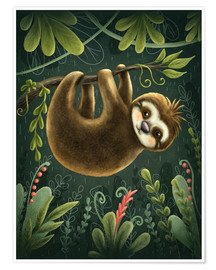 Poster Premium Little Sloth