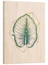 Legno  Geometry and Nature II  - Barlena
