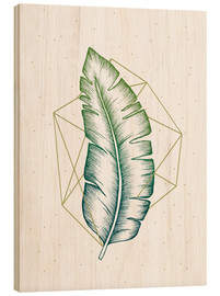 Legno  Geometry and Nature V - Barlena