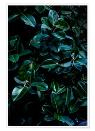 Poster Premium Dark Leaves 4