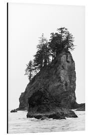 Alluminio Dibond  Rocks at Second Beach in Olympic National Park, USA - Peter Wey