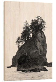 Legno  Rocks at Second Beach in Olympic National Park, USA - Peter Wey