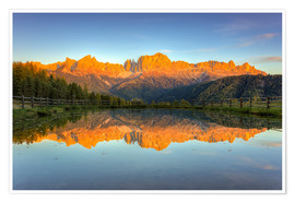 Poster Premium Alpenglow on the rose garden in the Dolomites in South Tyrol