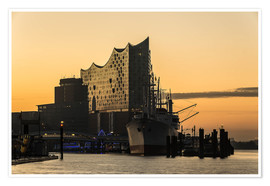 Poster  Morning mood at the Elbphilharmonie in Hamburg - Heiko Mundel