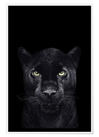 Poster  Black panther on black - Valeriya Korenkova
