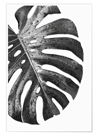 Poster  Monstera nera 01 - Art Couture