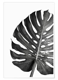 Poster  Black Monstera 03 - Art Couture